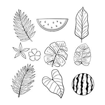 Zestaw ręcznie rysowane elementy letnie z liści i arbuza