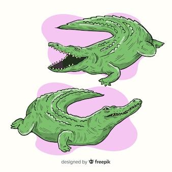 Zestaw ręcznie rysowane krokodyla