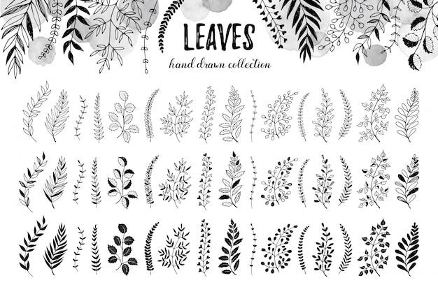 Zestaw ręcznie rysowane liści