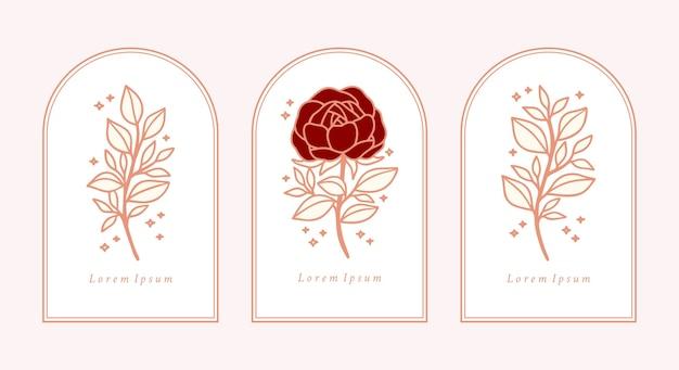 Zestaw ręcznie rysowane rocznika różowy kwiat róży botanicznej,