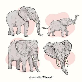 Zestaw ręcznie rysowane słoni