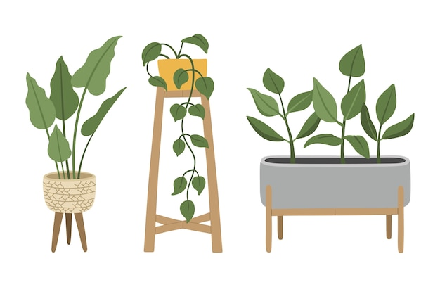 Zestaw ręcznie rysowanych roślin domowych, w nowoczesnych donicach, kwiaty w stylu skandynawskim, przytulna dekoracja do modnego wnętrza.