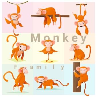 Zestaw rodziny małp