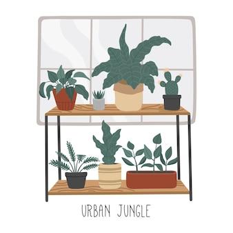 Zestaw roślin domowych ręcznie rysowane, miejska dżungla w stylu płaskiej kreskówki, dekoracja domu. skandynawskie przytulne wnętrze.