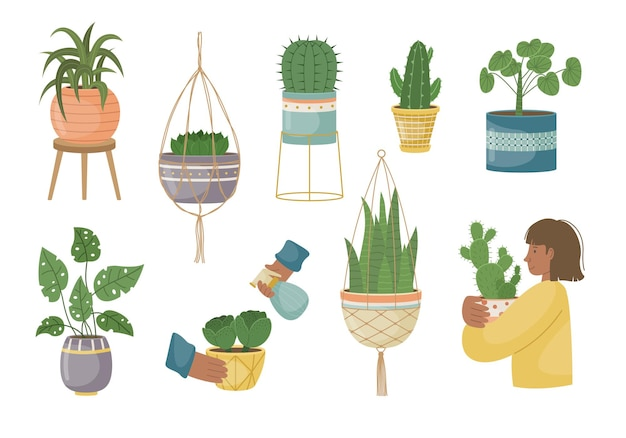 Zestaw roślin domowych w doniczkach. sadzenie roślin. rośliny ozdobne we wnętrzu domu. płaski styl.