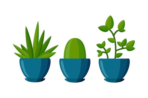 Zestaw roślin doniczkowych sukulenty w stylu kreskówki ilustracja wektorowa na białym tle