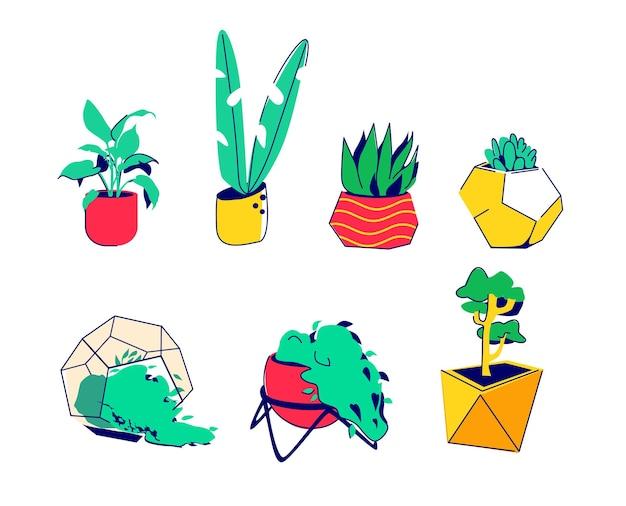 Zestaw roślin doniczkowych w nowoczesnych doniczkach element wystroju wnętrza ilustracja wektorowa w stylu kreskówki