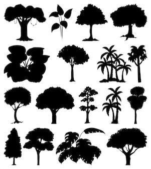 Zestaw roślin i drzew sylwetka
