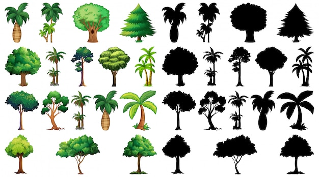 Zestaw roślin i drzew z jego sylwetka