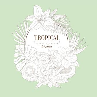 Zestaw roślin tropikalnych i owoców
