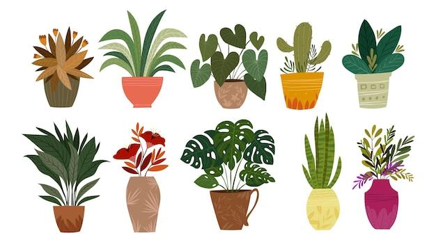 Zestaw roślin w doniczce ilustracji wektorowych rośliny doniczkowe do dekoracji wnętrz domu lub biura