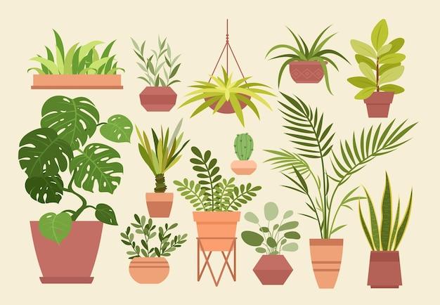 Zestaw roślin w doniczkach, kreskówka różne ozdobne rośliny doniczkowe do wnętrz domu