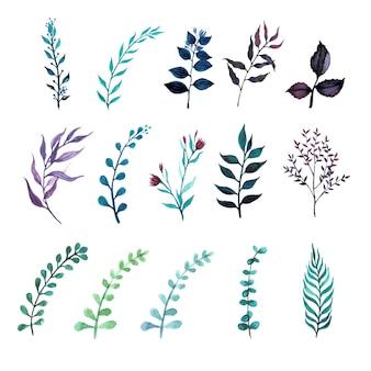 Zestaw roślin zielonych liści w stylu przypominającym akwarele