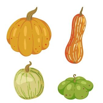 Zestaw różnych dyni, jesienne zbiory. wektor gryzmoły ilustracje jesieni. kolekcja cliparts kreskówka kolorowy na białym tle.