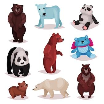 Zestaw różnych gatunków niedźwiedzi, dzikich niedźwiedzi i zabawek futrzany niedźwiedź postaci z kreskówek ilustracje