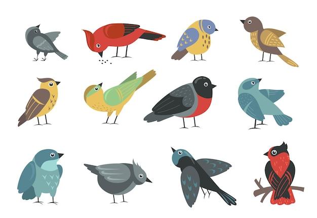 Zestaw różnych kolorowych małych ptaków