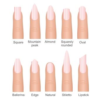 Zestaw różnych kształtów paznokci