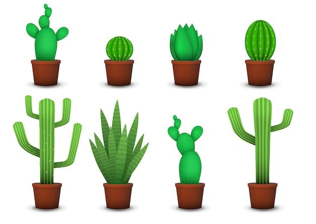 Zestaw różnych realistycznych sukulentów i kaktusów w ceramice.