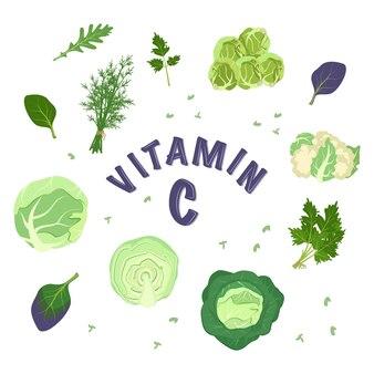Zestaw różnych rodzajów kapusty i ziół do diety. źródło witaminy c. zielone składniki dań wegetariańskich i zdrowego stylu życia. ikony żywności. ilustracja wektorowa