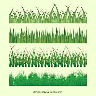 Zestaw różnych trawnikach