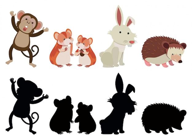 Zestaw różnych zwierząt