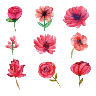 Zestaw różowych dzikich kwiatów akwarela sezonu wiosennego na kartkę z życzeniami