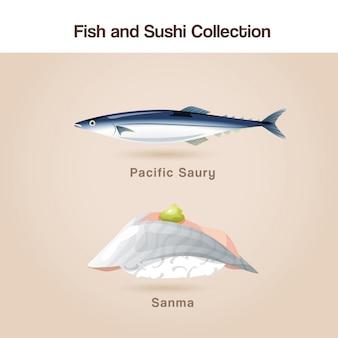 Zestaw ryb i sushi
