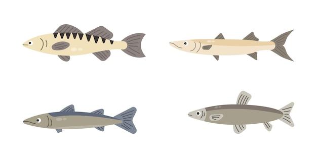 Zestaw ryb rzecznych. ryby na białym tle. ilustracja.