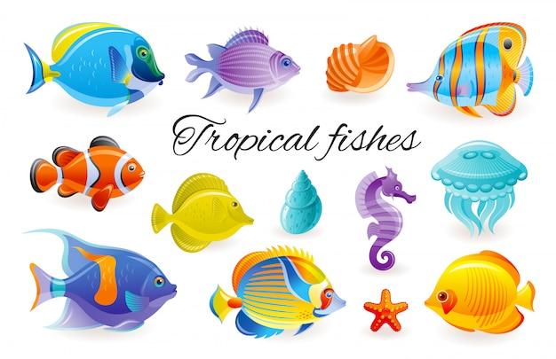 Zestaw ryb tropikalnych. akwarium, ikona morze. podwodne zwierzę rafy koralowej. kolekcja życia na białym tle oceanu. konik morski rozgwiazda angelfish butterfly surgeon jellyfish