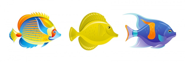 Zestaw ryb tropikalnych. wektorowe ikony akwarium lub morze. podwodne zwierzęta rafy koralowej. kolekcja życia na białym tle oceanu.