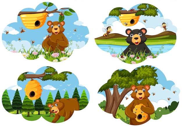 Zestaw scen niedźwiedzia