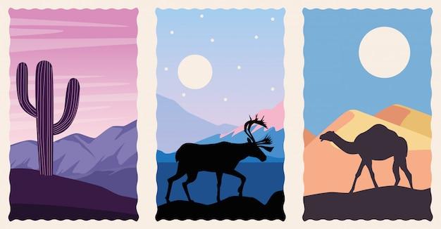 Zestaw scen płaskich krajobrazów