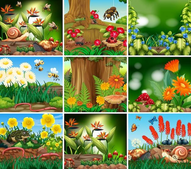 Zestaw sceny tła z motywem przyrody