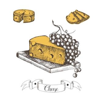 Zestaw serów ręcznie rysowane w plasterkach z winogronami w stylu vintage. naszkicować. ilustracja