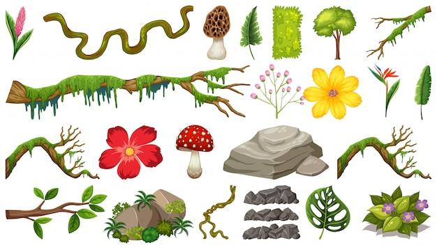 Zestaw skał i gałęzi
