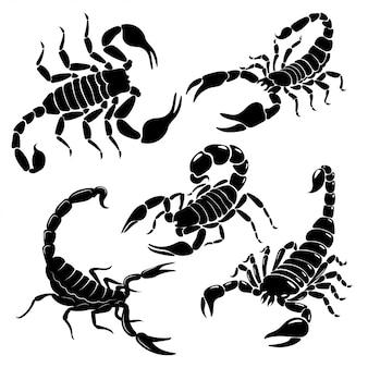 Zestaw skorpiona. kolekcja czarno-białych stylizowanych skorpionów.