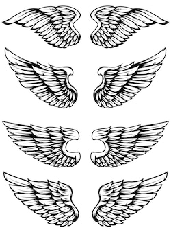 Zestaw skrzydeł na białym tle. elementy logo, etykieta, godło, znak, znaczek. ilustracja