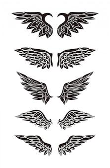 Zestaw skrzydeł