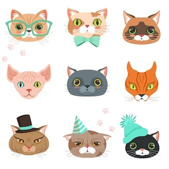 Zestaw ślicznych kotów głów różnych ras