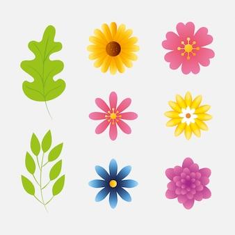 Zestaw ślicznych kwiatów z gałęzi i liści naturals
