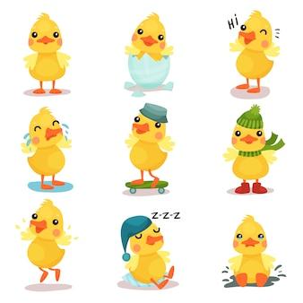 Zestaw ślicznych małych piskląt żółtej kaczki, kaczątko w różnych pozach i sytuacjach ilustracje kreskówek