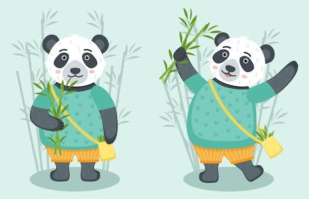 Zestaw ślicznych pand z bambusem, ilustracji wektorowych