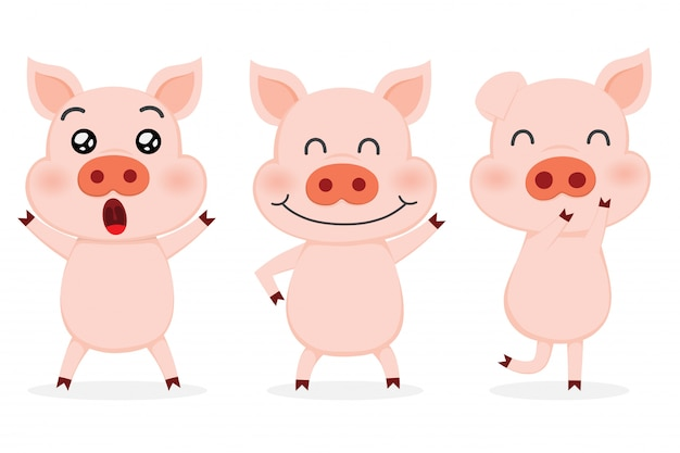 Zestaw ślicznych świń.