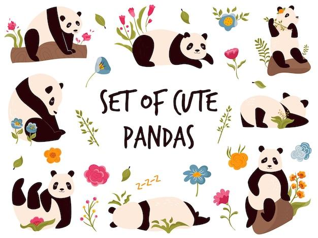 Zestaw ślicznych wesołych pand w różnych pozach. projekt postaci zwierząt