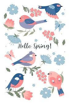Zestaw ślicznych wiosennych ptaków na białym tle