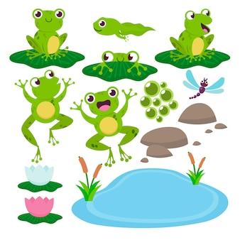 Zestaw ślicznych żab rysunkowych