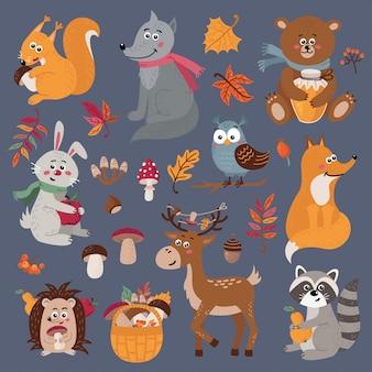 Zestaw ślicznych zwierząt leśnych