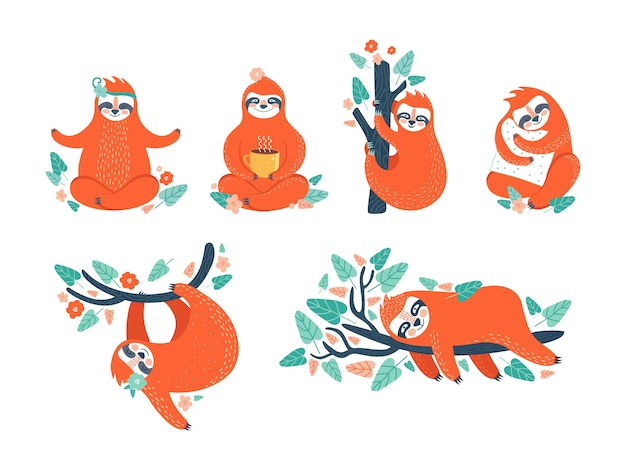 Zestaw śmieszne leniwce w różnych pozach