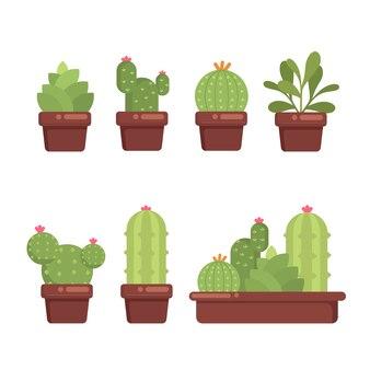 Zestaw soczysty kaktus cacty rośliny domowe kwiatowy kolekcja ilustracji