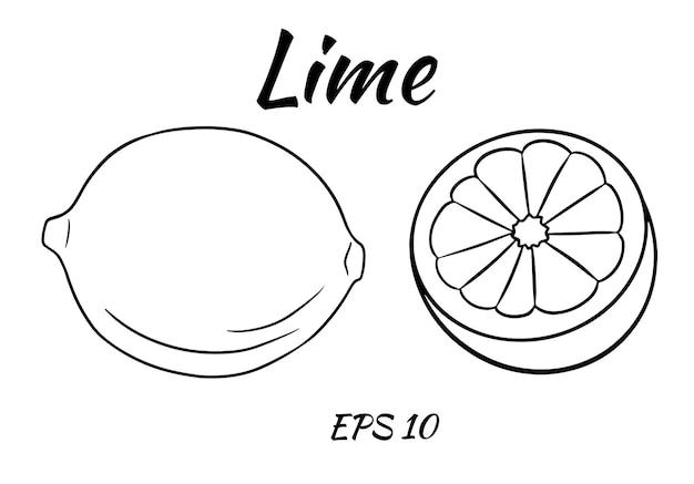 Zestaw soczystych limonek.